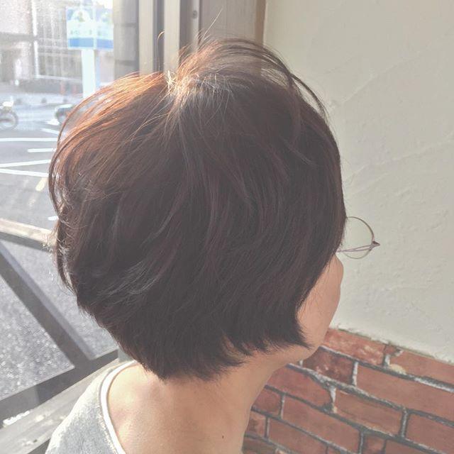 トップふんわりショートスタイルです!髪質が猫っ毛でトップがペタンとしてしまう、直毛すぎてショートにすると動きが出ない…という方は、トップ中心にパーマをかけるといいですよ(*´∀`*)ふんわりカールをつけることで、トップのボリュームが出しやすくなり、動きが出ます♪お悩みの方は、ぜひご相談下さい☆#fashion #makeup #hairstyle #hair #ファッション #メイク #ヘアスタイル #ヘア #ショートヘア #ショート #ボブ #ショートボブ #大人ショート #ナチュラル #大人カジュアル #美容室 #イマジンヘアー #美容室イマジン #福島 #郡山 #富久山
