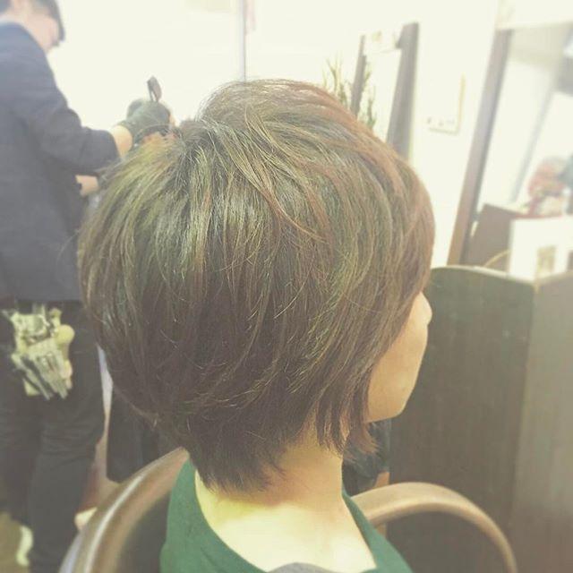 大人のショートスタイルです!トップがふんわりするように、必要なところに部分的にパーマをかけています☆もともと直毛でトップにボリュームが出にくい髪質でしたが、パーマでそれを補って、シルエットが丸くキレイに見えるようになりました!トップに4本、大きめのカールが出るように巻いてあります。髪質や骨格、なりたいスタイルなどで巻く本数やカールの大きさなど異なりますので、1人1人に合わせてチョイスしていきます(^-^) ボリュームを出したい、ショートスタイルのセットが上手くいかない、など何でもご相談下さい!#hair #hairstyle #makeup #fashion #ヘアスタイル #ヘア #メイク #ファッション #ショート #ショートヘア #ミディアム #ボブ #ロング #perm #パーマ #tocosme #大人ショート #大人ヘア #コスメパーマ #福島 #郡山 #富久山 #イマジンヘアー #美容室イマジン