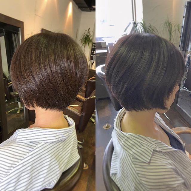 襟足短めのスッキリショートスタイルです︎・首がキレイに見えますね☆・ポイントは、後頭部にふっくらした丸みをつけたところです!頭の形がキレイに見えます☆・ササっとハンドブローでも簡単にスタイルが決まる楽チンヘアです。・髪の悩みや疑問など、何でもご相談下さいね!・山崎・#hair #hairstyle #fashion #makeup #beauty #shorthair #medium #bob #longhair #ヘア #ヘアスタイル #ファッション #メイクアップ #ビューティー #ショートヘア #ショートボブ #ボブヘアー #ミディアム #ロングヘア #襟足スッキリ #福島 #郡山美容室 #富久山 #美容室イマジン #イマジンヘアー